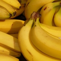 How to Follow The Banana Man's Path to Success